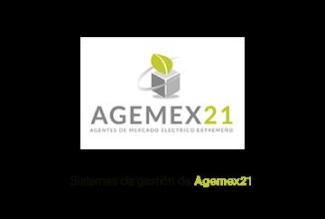 Sistemas de Gestión de Agemex21